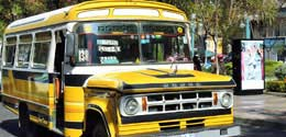 Charleston Transportation Service