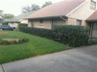 after-front-lawn-tree-removal-300x225