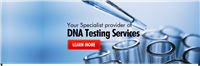 Dna Testing Service