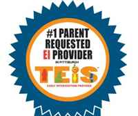 TEIS Inc.