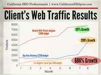 CA SEO Pros Client's Web Traffic Improvements