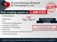 Occams Business Research & Consulting Pvt. Ltd
