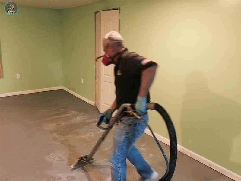 Mold Removal & Water Damage Restoration