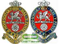 Professional Embroidery Digitizing Services