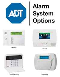 Ogden Business Security Systems