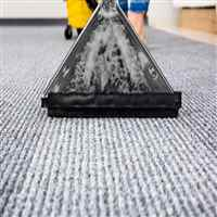 Commercial Carpet & Rug Cleaning