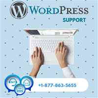 Wordpresssupport247