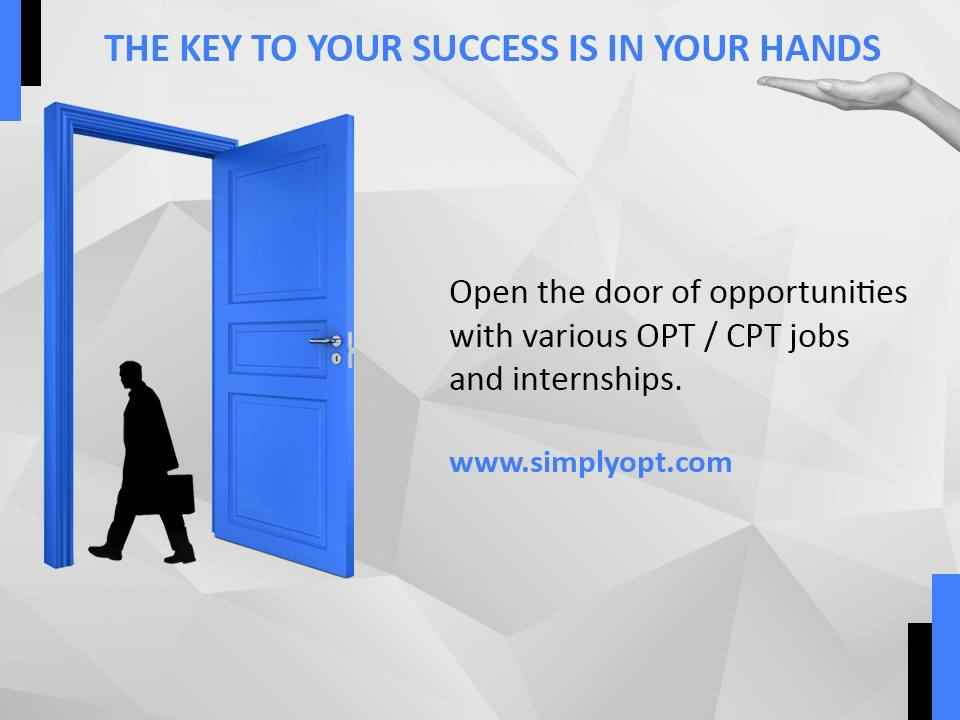 entry level opt jobs