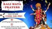 Pandit Yogeshwar Nath-Best Astrologer