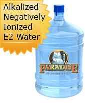 Alkalized, Negatively Ionized E2 Water