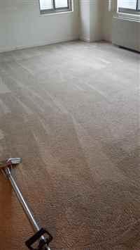 Carpet Cleaning Ashburn