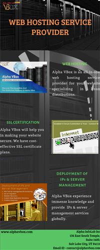 Info Hosting service provider