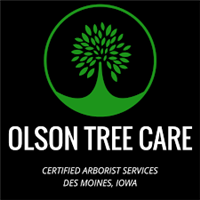 Olson Tree Care