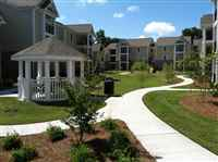 Southern Palmetto Landscape, Inc.