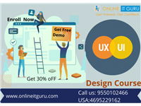 UI Online Training