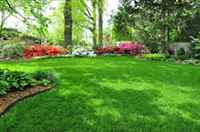 Custom Landscaping and Lawncare