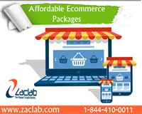 Ecommerce websites,