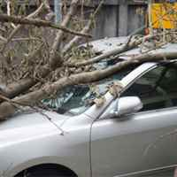 InsuranceAgencies2