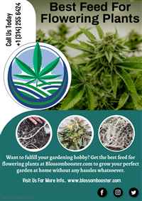 Best Feed for Flowering Plants