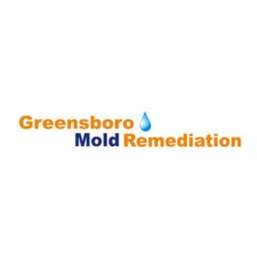 Mold remediation Greensboro NC