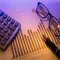 Global Tax Group, Inc. - Michael S. Sarabjit, CPA,