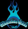 Chameleon Glass logo