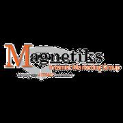 Magnetiks Internet Marketing Group