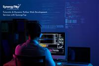 Futuristic & Dynamic Python Web Development Services with SynergyTop