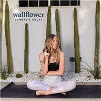Wallflower Cannabis Las Vegas, NV