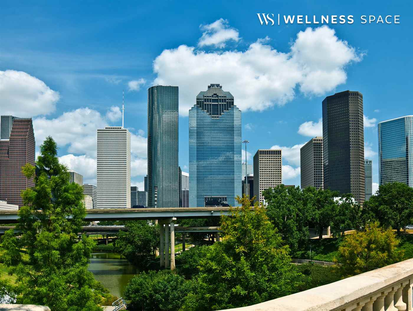 WellnessSpace