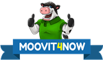Moovit4now