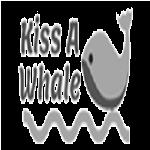 Whale Watching Tours and Cruises Baja California